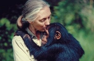 phrases de Jane Goodall