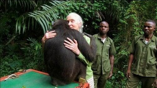 phrases de Jane Goodall