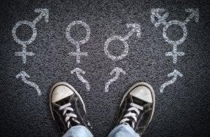 dysphorie de genre et éducation