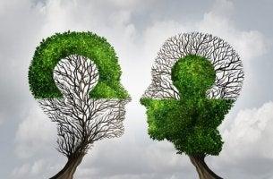 deux grandes lois de la mémoire