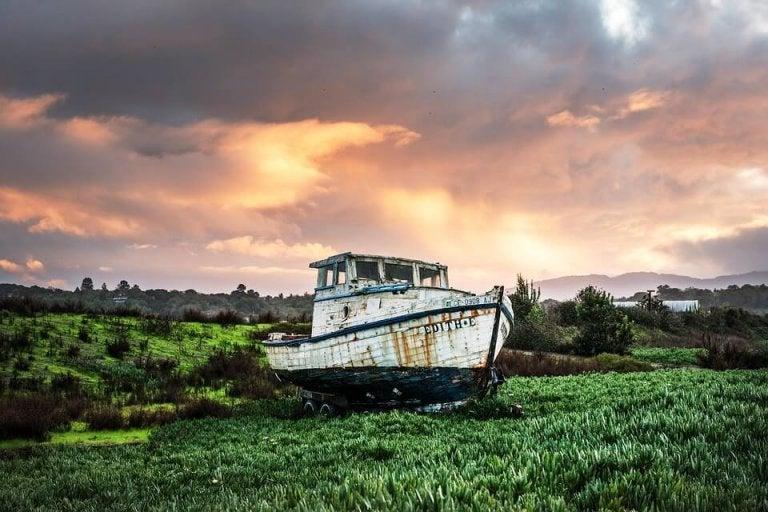 L'identité et le bateau de Thésée