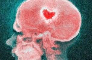 cerveau en cas de rupture