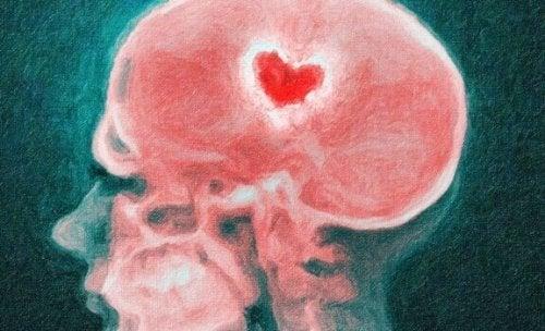 Votre cerveau en cas de rupture: la science des cœurs brisés
