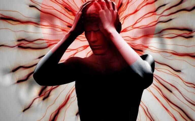 nocicepteurs et fibromyalgie