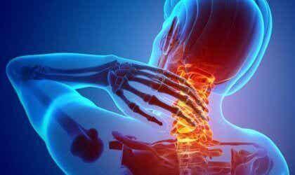 Les nocicepteurs, les récepteurs de la douleur