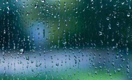 Le son de la pluie : une mélodie de calme pour notre cerveau