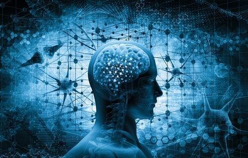 cerveau dépendant