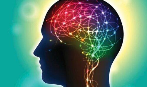 cerveau lumineux