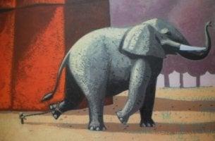 éléphant enchaîné