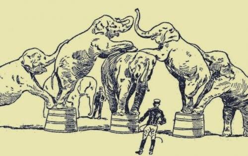 l'histoire de l'éléphant enchaîné