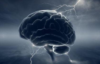 Neurobiologie du psychopathe : quand le cerveau perd son «humanité»