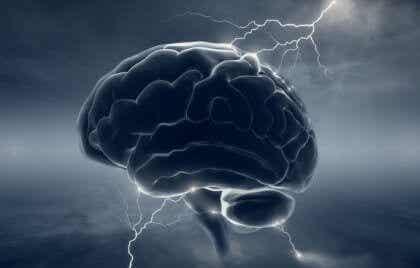 """Neurobiologie du psychopathe : quand le cerveau perd son """"humanité"""""""