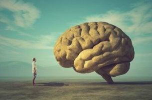 sculpter notre cerveau