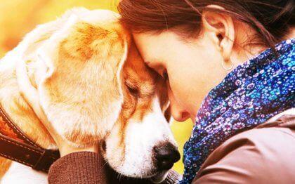 Les raisons qui nous poussent à aimer un animal avec autant d'intensité