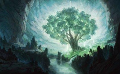 L'arbre à souhaits, un conte d'Osho