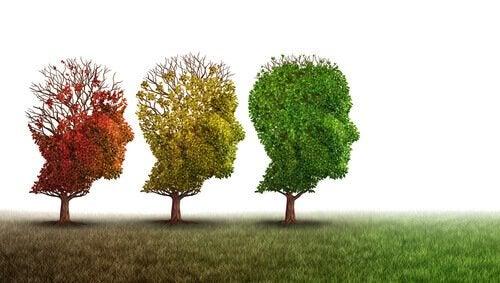 lien entre herpès et détérioration cognitive