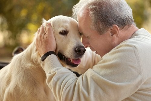 Thérapie assistée par l'animal chez des personnes atteintes d'Alzheimer