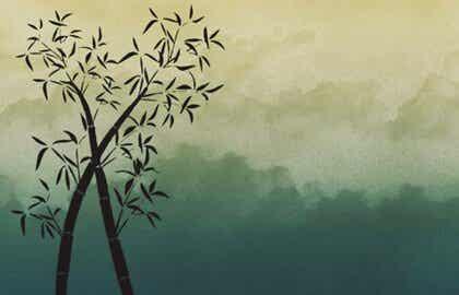 Être comme le bambou: temps, force et flexibilité
