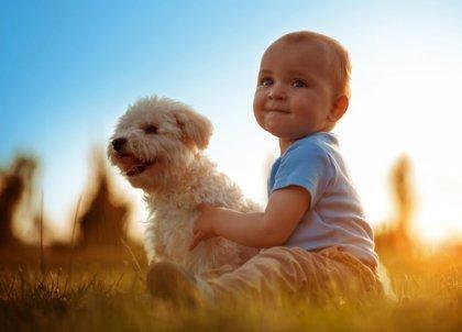 plus de compassion : les instincts primaires