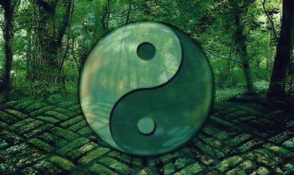 7 phrases du Tao pour évoluer