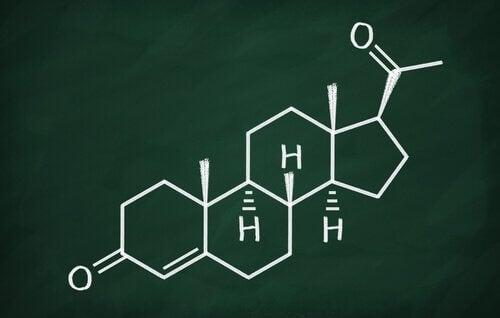Progestérone : caractéristiques et fonctions