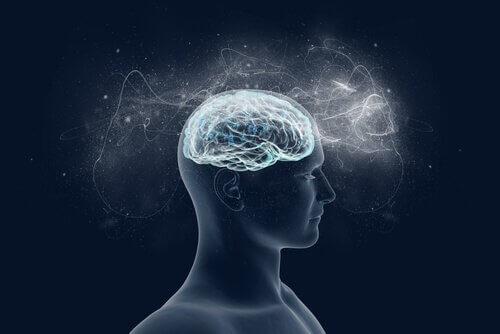 influence de la religion sur le cerveau