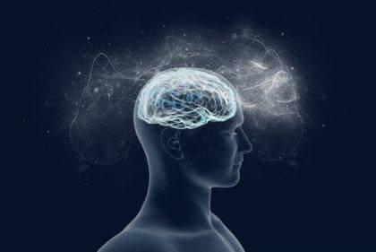 le fait de désapprendre et la plasticité cérébrale