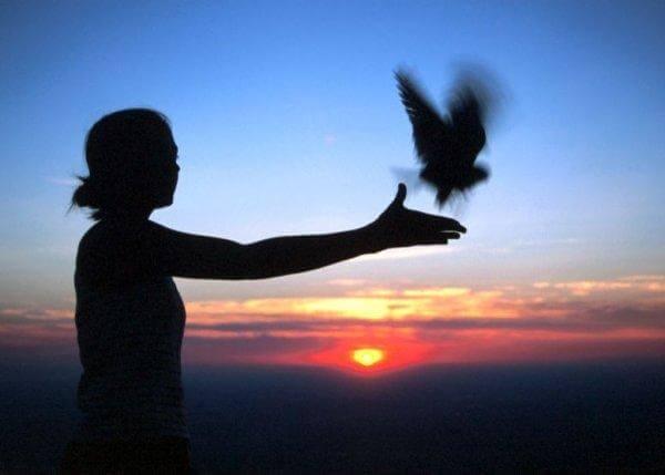 dharmas : réveiller notre côté spirituel