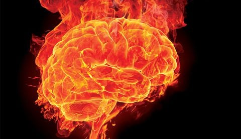 cerveau enflammé
