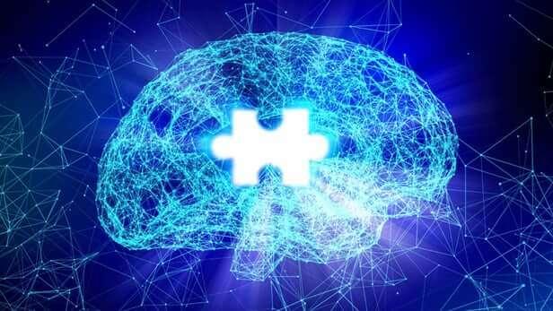 psychophysiologie et cerveau
