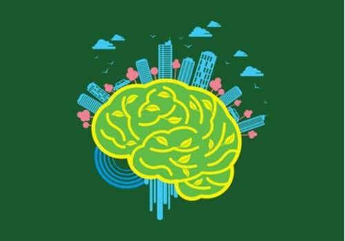 Neuro-architecture: le pouvoir de l'environnement sur le cerveau