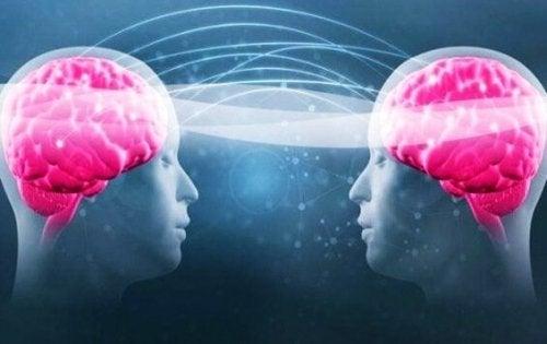 les bonnes conversations et leurs effets sur le cerveau