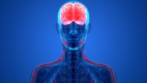 Psychiatrie biologique : en quoi consiste-t-elle ?