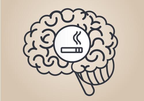 Nicotine: comment affecte-t-elle le cerveau?