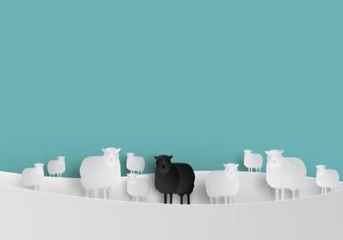 Le mouton noir au sein du groupe