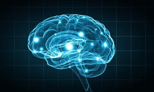 effet de l'art sur le cerveau