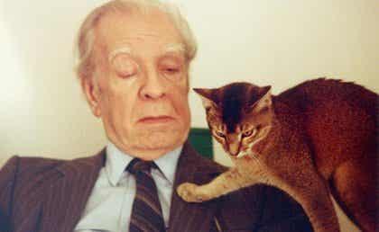 Jorge Luis Borges : biographie d'un érudit