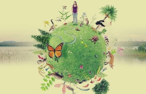 illustration représentant l'émodiversité
