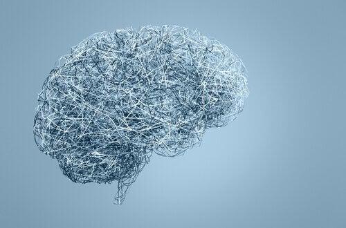 neurosexisme