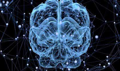 Notre cerveau se repose-t-il ?