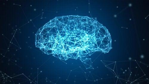 Le projet Blue Brain