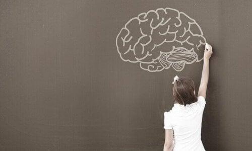 La neuropsychologie du développement infantile