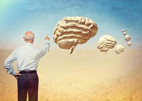 La neuropsychologie du vieillissement