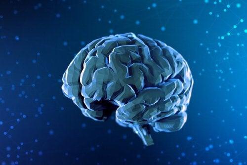 Une brève histoire des neurosciences