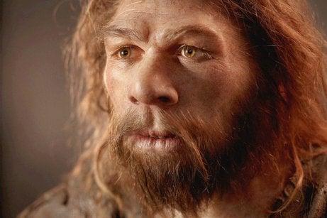 Le cerveau des Néandertaliens