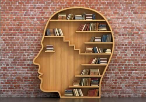Une brève histoire de la psychothérapie