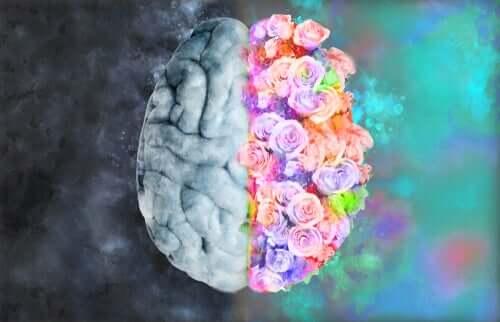 Neuroesthétique: la science pour comprendre l'art