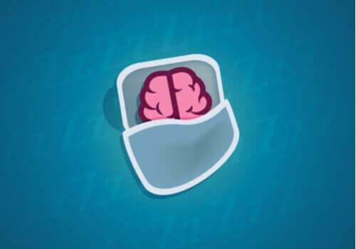 Que se passe-t-il au niveau des neurones quand on dort?
