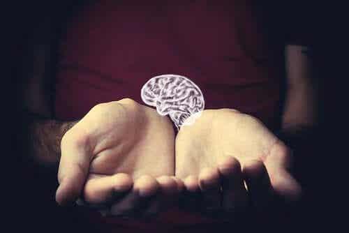 Épidémiologie différentielle: pourquoi l'intelligence prédit la longévité?