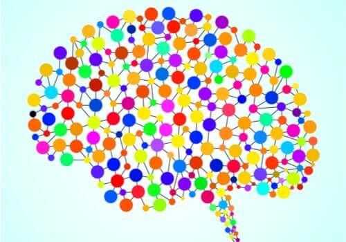 Les 97 zones du cerveau qui nous sont inconnues
